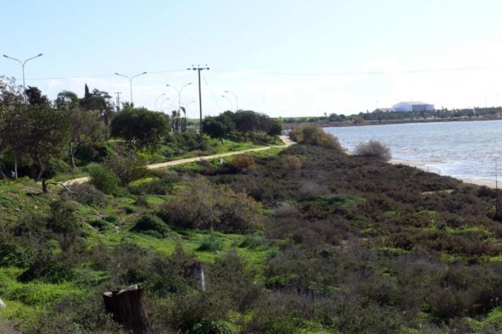 Ciprus - út a sóstó mentén