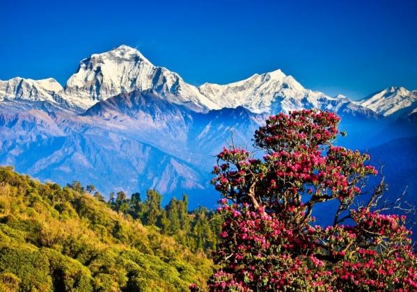 Képtalálatok a következőre: nepal